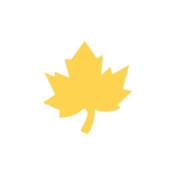 Dekorační děrovačka 2,5cm – javorový list