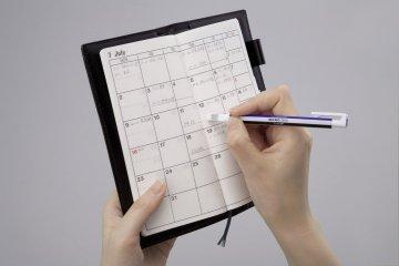 Kalia - EH_KUS_demo_calendar.jpg